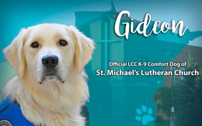 Comfort Dog and Lutheran Church Charities (LCC)
